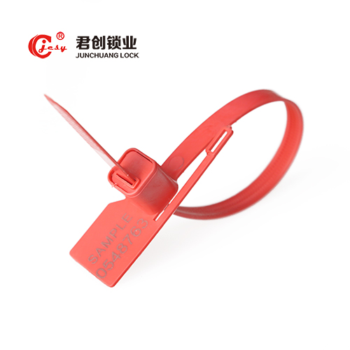 Anti-reverse Clear Plastic Meter Seal