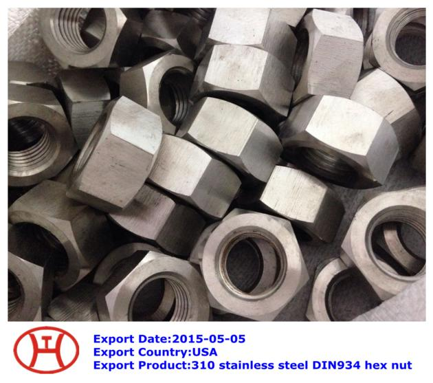 310 stainless steel DIN934 hex nut