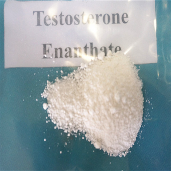 Testosterone Enanthate male hormone drugs - Foreign Trade Online