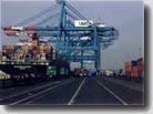 FREIGHT FORWARDER & SHIPPING AGENCY