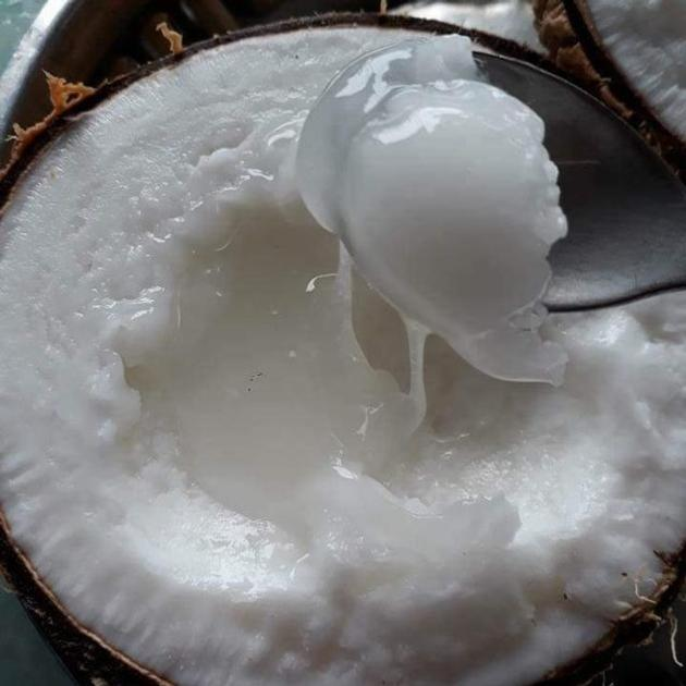 Wax Coconut