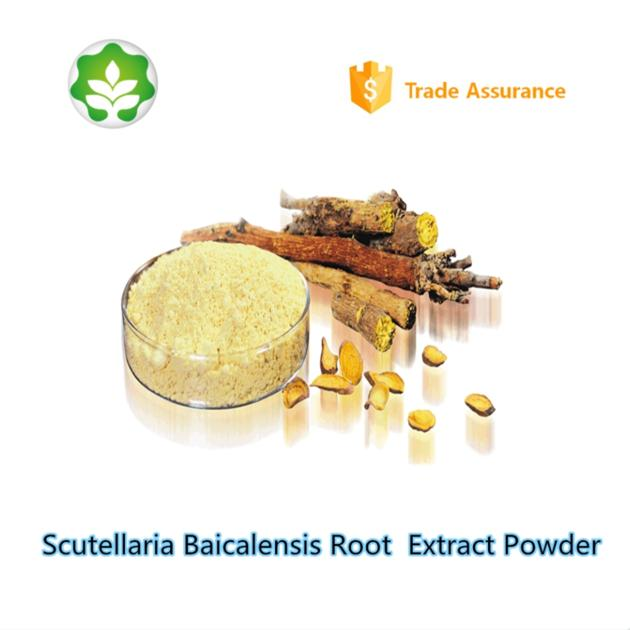 best choice acne treatment scutellaria baicalensis root extract powder