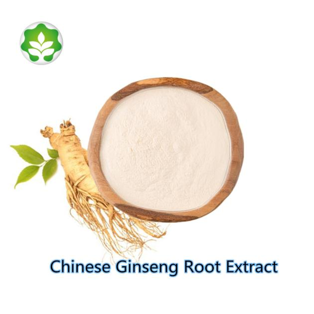 best price low pesticide chinese ginseng root extract