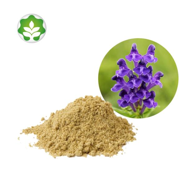 chinese skullcap herb extract powder for whitening skin