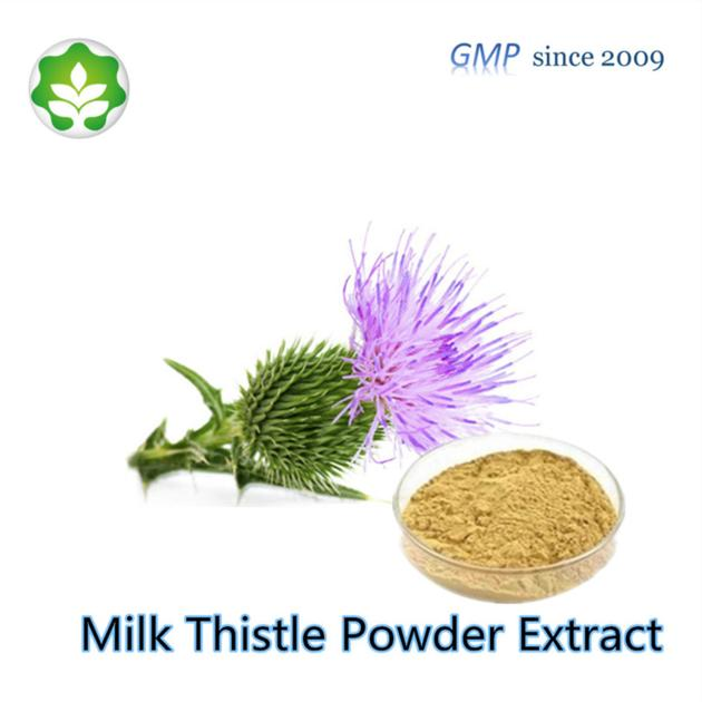 milk thistle seeds powder extract p.e