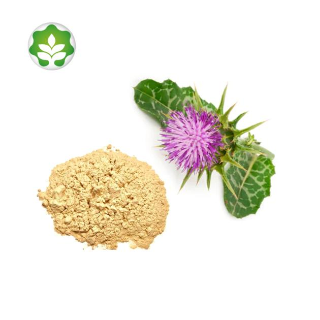 organic milk thistle extract powder for feeding