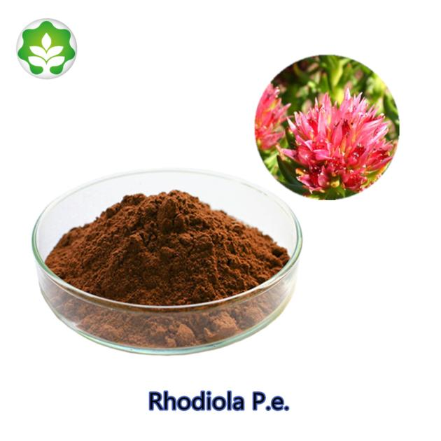 promoting mental status rhodiola p.e. with best service